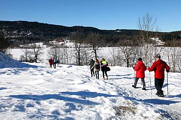 Walkers in the snow at Sem Lake, Asker, South Norway, Scandinavia, Europe