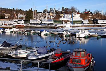 Marina in winter, Asker, Oslofjord, Norway, Scandinavia, Europe