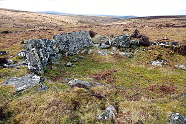 Ruined prehistoric farmhouse, near Headland Warren, Dartmoor National Park, Devon, England, United Kingdom, Europe