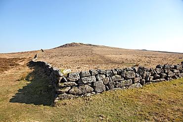 Granite dry stone wall, near Widecombe-in-the-Moor, Dartmoor National Park, Devon, England, United Kingdom, Europe