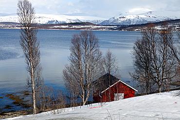 Boathouse on the shores of a fjord near Eidkjosen, Kvaloya (Whale Island), Troms, arctic Norway, Scandinavia, Europe