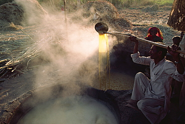 Crushed cane juice is boiled and set into cakes of raw sugar, after sugar cane harvest, Gujarat state, India, Asia