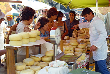 Shoppers tasting cheeses at a cheese stall in the market in Siena, Tuscany, Italy, Europe