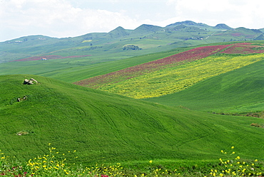Fields and rolling hills in a typical landscape near Misilmeri in central western Sicily, Italy, Europe