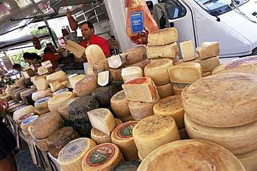 Pecorino cheese in the market, Santa Teresa Gallura, Sardinia, Italy, Europe