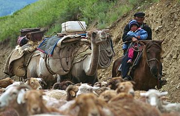 Summer migration of Kazaks, Altay Mountains, northeast Xinjiang, China, Asia