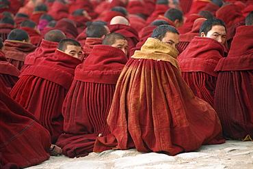 Lamas, Labrang monastery, Gansu province, Tibet, China, Asia