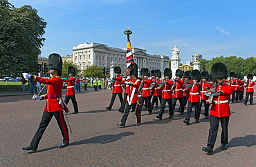 Grenadier Guards march to Wellington Barracks after Changing the Guard ceremony, London, England, United Kingdom, Europe