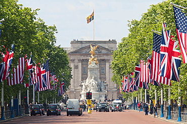 Flags lining the Mall to Buckingham Palace for President Obama's State Visit in 2011, London, England, United Kingdom, Europe