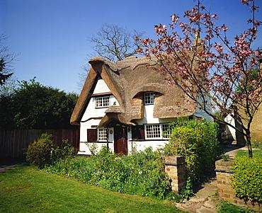 Cottage in spring, Houghton, Cambridgeshire, England, United Kingdom, Europe
