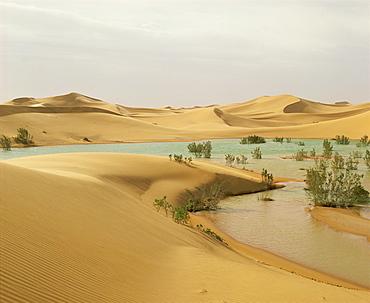 Flood waters in Algerian Sahara, at edge of Grand Erg Occidental, south of El-Golea, Algeria, North Africa, Africa