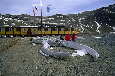 The Polish Arctowski Base, King George Island, South Shetland Islands, Antarctica, Polar Regions
