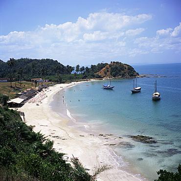 Baia (Bay) de Todos os Santos, near Salvador, Ilha (island)_ dos Frades, Bahia state, Brazil, South America