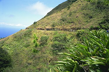 Walkers on Green Mountain, Ascension Island, Mid Atlantic