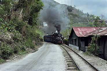 Toy Train en route for Darjeeling, West Bengal state, India, Asia