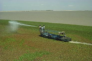 Spraying to eradicate water hyacinth at dam, Jebel Aulia, Sudan, Africa