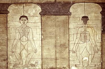 Diagram of Thai massage points, Wat Po, Bangkok, Thailand, Southeast Asia, Asia