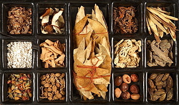 Various Chinese herbs for traditional Chinese medicine