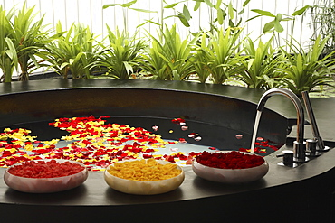 Bath with flowers at Asmara Spa in Singapore, Southeast Asia, Asia
