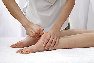 Siddha Marma Massage at Aura Spa at Park Hotel, New Delhi, India, Asia