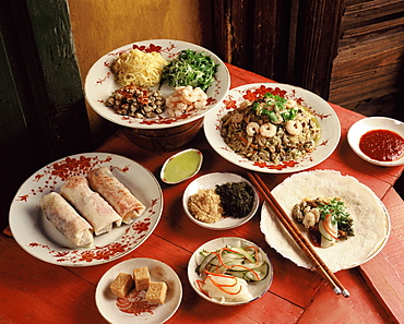 Ingredients of fresh spring rolls, China, Asia - 238-5268