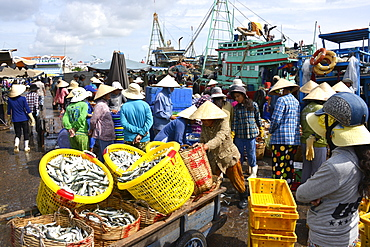 Market, Phan Thiet, Vietnam, Indochina, Southeast Asia, Asia