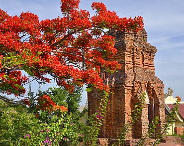 Po Shanu Cham temple, Phan Thiet, Vietnam, Indochina, Southeast Asia, Asia