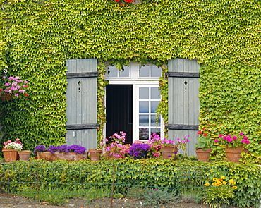 Close-up of house at St. Servan-sur-Mer, near St. Malo, Brittany, France, Europe