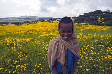 Portrait of local girl, Green fertile fields and yellow Meskel flowers in bloom after the rains, Ethiopian Highlands near the Simien mountains and Gonder, Ethiopia, Africa