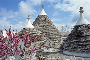 Conical rooftops of trulli near Martina Franca in Puglia, Italy, Europe