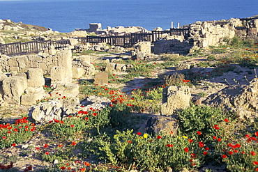 Punic and Roman ruins of city founded by Phoenicians in 730BC, Tharros, island of Sardinia, Italy, Mediterranean, Europe