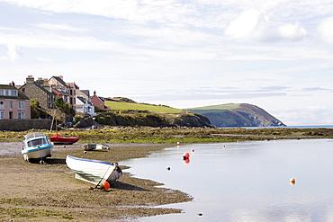 Parrog beach and the Pembrokeshire Coast Path, Newport, Pembrokeshire, Wales, United Kingdom, Europe