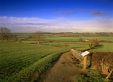 Bosworth Battlefield Country Park, site of the Battle of Bosworth in 1485, Leicestershire, England, United Kingdom, Europe