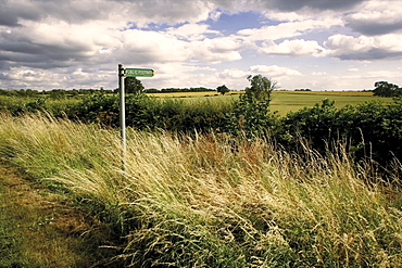 Public footpath sign, motte and bailey castle, Yelden (Yielden) village, Bedfordshire, England, United Kingdom, Europe