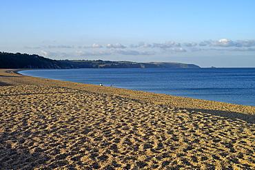 Torcross village, Slapton Ley Sands, South Hams, Devon, England, United Kingdom, Europe