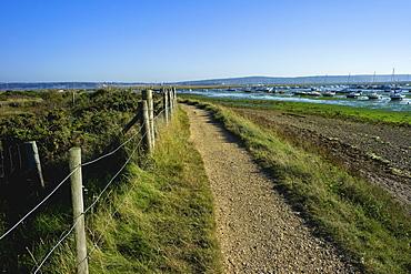 Salt marsh and the Hampshire coast, Hurst Spit, Keyhaven, Hampshire, England, United Kingdom, Europe