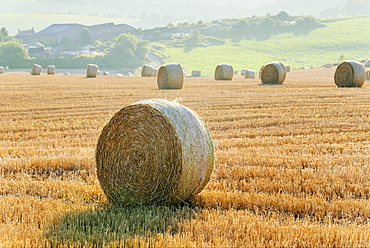 Hay bales in a field on a farm, South Downs, Sussex, England, United Kingdom, Europe
