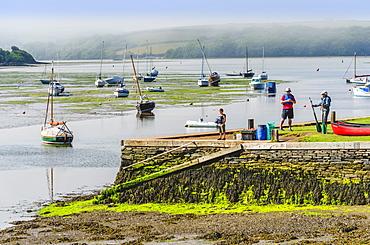 The Kingsbridge Estuary, Kingsbridge, Devon, England, United Kingdom, Europe