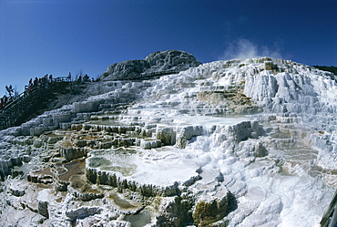 Travertine calcite deposits, Minerva Terrace, Mammoth Hot Springs and Terraces, Yellowstone National Park, UNESCO World Heritage Site, Wyoming, United States of America (U.S.A.), North America
