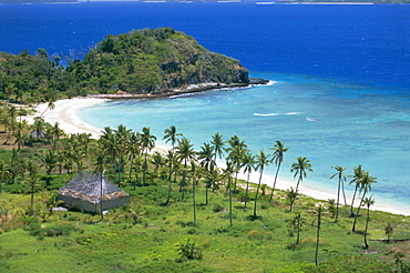 Coconut plantation and old farmhouse beside coral sand bay, Mana Island, Mamanuca group, west of Viti Levu, Fiji, South Pacific islands, Pacific