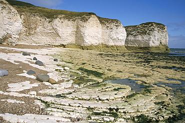 Wave-cut platform, and chalk cliffs, Flamborough South Landing, Yorkshire, England, United Kingdom, Europe