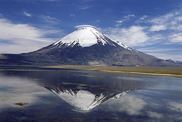 Volcano of Parinacola, 6348m high, reflected in water of Chungara Lake, Parque Nacional de Lauca, Chile, South America