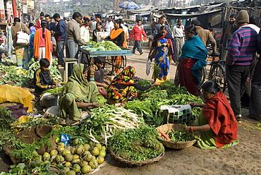 Morning vegetable market on street above Dasaswamedh Ghat, Varanasi, Uttar Pradesh state, India, Asia