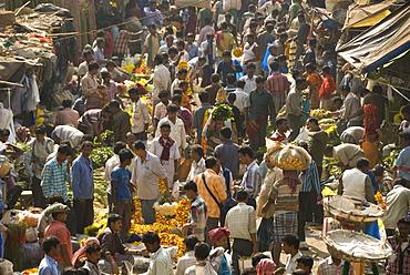 Armenia Ghat market, Kolkata (Calcutta), West Bengal, India, Asia