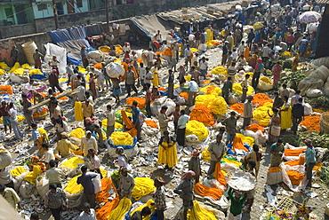 Armenia Ghat flower market, Kolkata (Calcutta), West Bengal, India, Asia