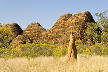 Sandstone hills and termite mounds in The Domes area of Purnululu National Park (Bungle Bungle), UNESCO World Heritage Site, Western Australia, Australia, Pacific