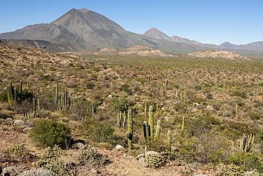 Volcan las Tres Virgenes, Santa Rosalia, Baja California, Mexico, North America