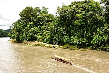 Misahualli in The Oriente, head of navigation on Rio Napo (Amazon), Ecuador, South America