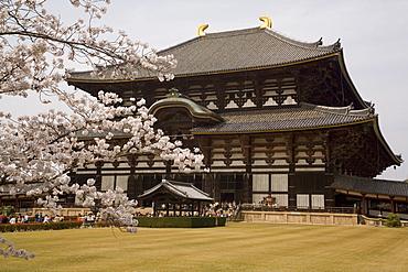 Todaiji temple, UNESCO World Heritage Site, Nara, Japan, Asia