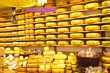 Cheese shop, Alkmaar, Holland, Europe